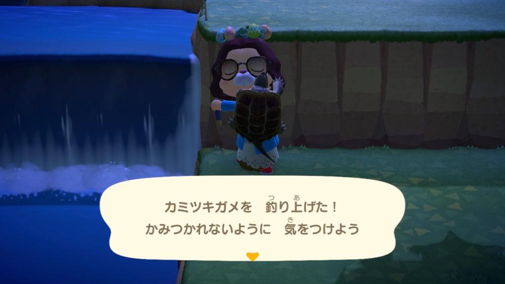 あつ森 カミツキガメ